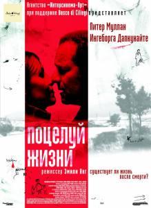 Поцелуй жизни (2004)