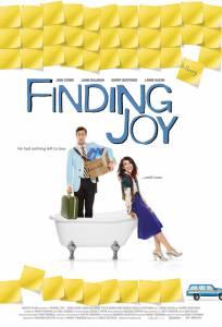 В поисках радости (2013)