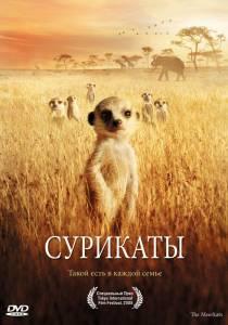 Сурикаты (2008)