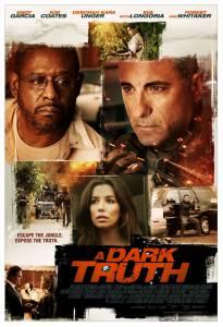 Темная правда (2012)