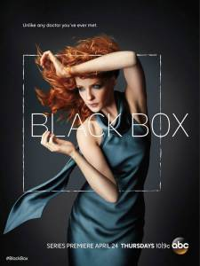 Чёрный ящик (1-13 серия)