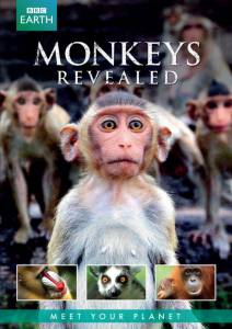 Всё о мире обезьян (сериал) / Monkeys Revealed (2014 (1 сезон))