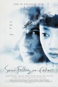 Заснеженные кедры (1999)