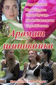 Аромат шиповника (1-32 серия)