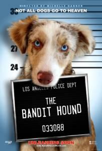 The Bandit Hound / The Bandit Hound (2016)